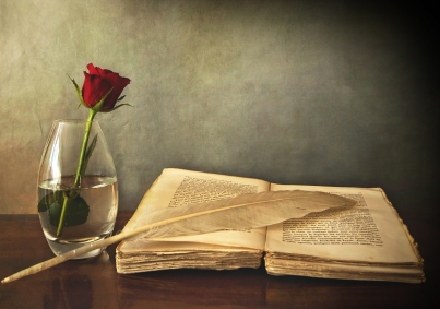 book_old_pen_table_vase_rose_red_76972_6000x4220
